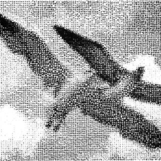 F. Booth Wilson – L'archéologie de l'animation par ordinateur