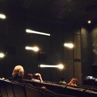 Renée Bourassa, Le personnage numérique : figures de synthèse et capture de performance dans le cinéma contemporain